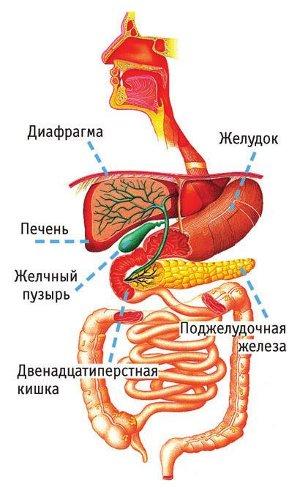 Лечение ребёнка грипп
